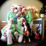Weihnachtsgrüße vom Team